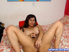 Horny Blonde Tranny Gets a Wild Anal Banging